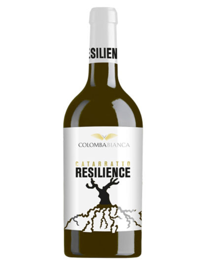 Resilience - Catarratto